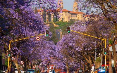 Things to do in Pretoria (with kids)