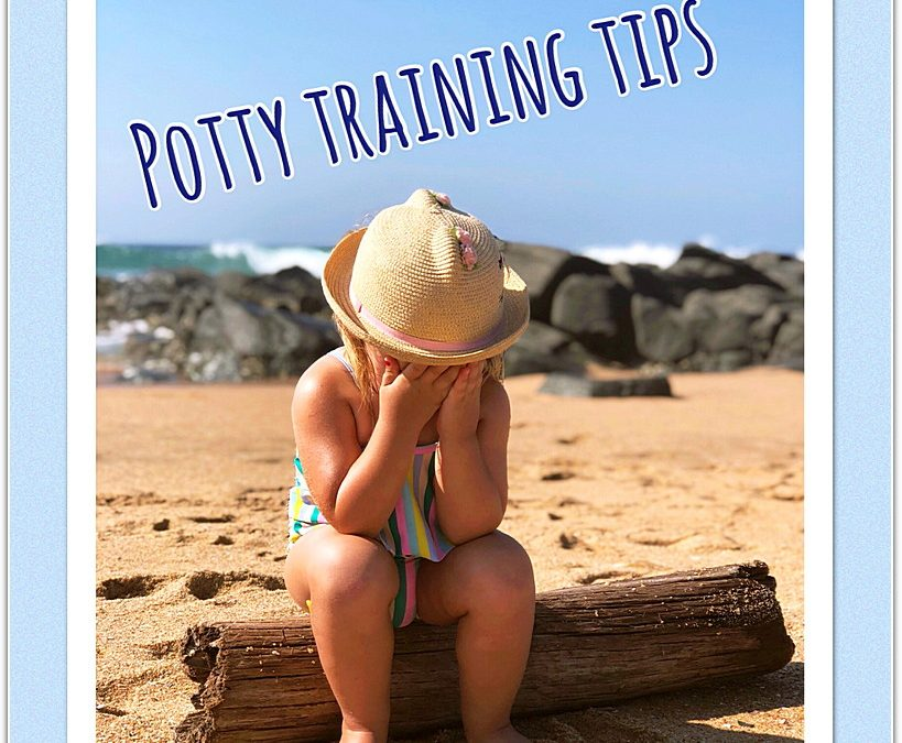 Potty Training 101: How To Potty Train A Toddler